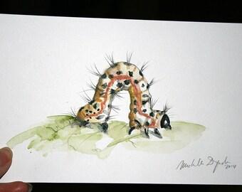 Original Caterpillar watercolor painting - Insect art - Animal painting- Zen Drawing by Michelle Dujardin Yellow Caterpillar art