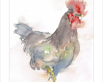 Rooster Cockerel Portrait Wildlife Art by Lesley Silver BA, Wife of award winning artist John SIlver. Personally signed A4 Print. LRO001SP