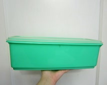 Groovy 1970s Tupperware Mint Green Celery Keeper Fridge Storage Container Complete 3 Piece with Tray Made in USA