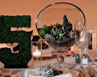 Moss Table Numbers, Wedding Decor, Moss, Centerpiece, Terrarium, Wedding Decorations