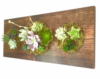 CUSTOM COLOR: Trifecta Succulent + Cacti Vertical Garden | Vertical Planter | Living Wall | Wall Planter | Hanging Planter | Wood Pla