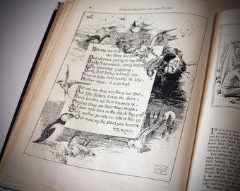 Sunday: Reading for the young  Antique 1895 Vintage UK Childrens Book Illustraded Poetry story book