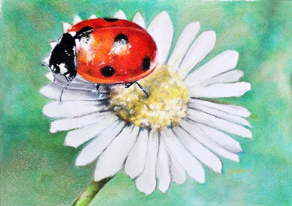 Realistic ladybug drawing - photo#16