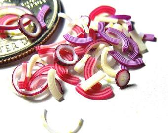 FLASH SALE Miniature Onion Mix 30pcs