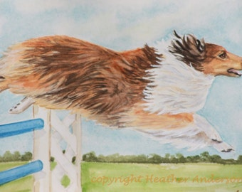 "4 Sable Sheltie Notecards, w/ envelopes, ""Full Flight Sheltie"",   5 1/2"" x 4 1/4"",Hand Drawn Art, Dog Lovers Gift"