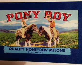 Original Pony Boy Honeydew Melons Vintage Crate Label Rose Valley Produce Woodland, California