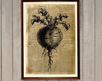 Beetroot poster Vegetables print Kitchen decor Dictionary page WA516