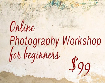 Online Photography Workshop for Beginners
