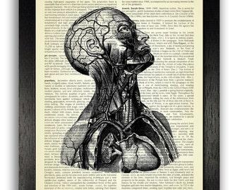 Anatomy Portrait Art Print on Vintage Book Page, Antique Anatomical Illustration Art, Human Anatomy Print, Anatomy Wall Decor, Portrait Art