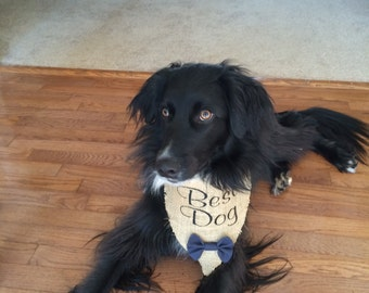 Burlap Best Dog Wedding Bandana
