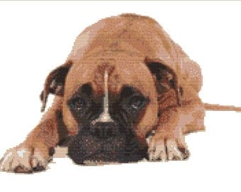 CROSS STITCH KIT- Boxer Dog 33cm x 21 cm