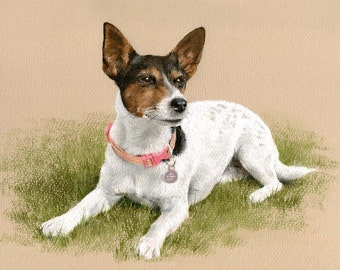Custom Pet Portrait. Pastel drawing / painting from photo. by professional artist Margaret Scanlan. Dog / Cat / Horse