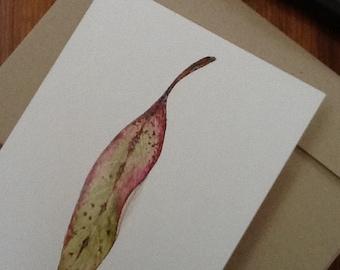 Blank card - Eucalyptus Leaf from Original artwork