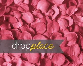 Durable Matte Vinyl Backdrop Valentine's Day Drops Dusty Rose Rose Petals Photo Background (Material and Size Options Available)