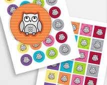 "Cute owls collage sheet - 1.5"" circles and squares - owl cartoon, scrapbooking, bottle cap images - 36 images - INSTANT DOWNLOAD"