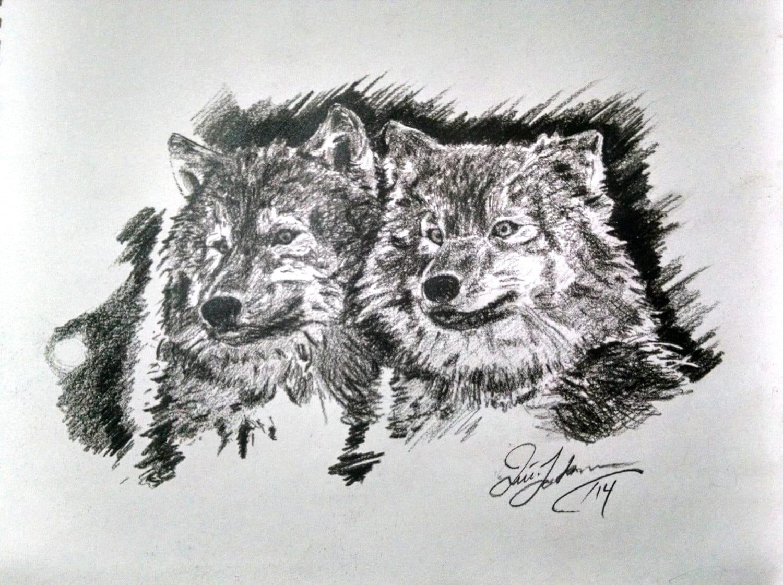 Matita disegno stampa carbone due lupi schizzo di fauna for Lupo disegno a matita