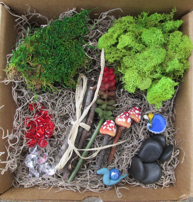 Diy red fairy garden kit diy micro terrarium kit by for Fairy garden kits