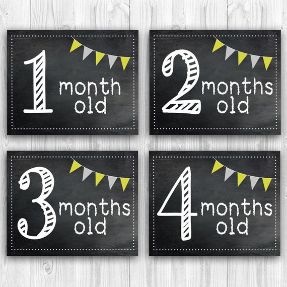 Printable Baby Milestone Cards Chalkboard Month Signs Photo