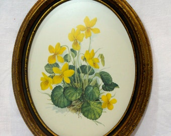 SALE!!  Vintage Yellow Daffodil Flower Picture signed by Amtr