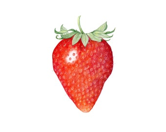 Strawberry - Archival print of colored pencil drawing / food art / kitchen art / wall art