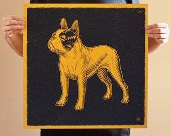 Boston Terrier (Gold)