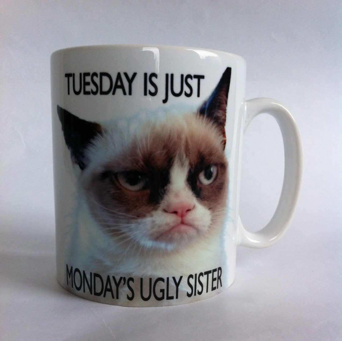 Ugly Birthday Cat: Grumpy Cat Tuesday Is Just Monday's Ugly Sister Mugs