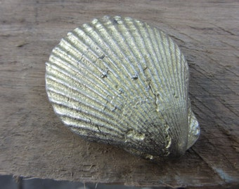 Hand cast pewter sea shell decorative paper weight ornament.