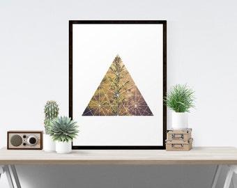 Geometric Art, Geometric Art Print, Modern, Minimalist, Botanical, Triangle,  Botany,  Geometric Print,  Fine Art Print
