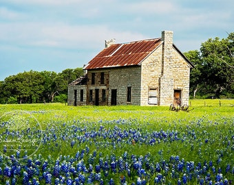 The Bluebonnet House : Marble Falls Texas