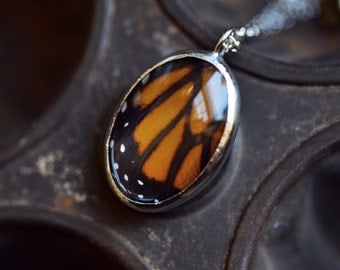 Real Butterfly Wing Monarch Necklace. Silver Butterfly Necklace. Silver Butterfly. Butterfly Jewelrly. Butterfly Pendant.