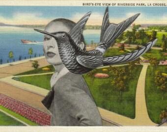 Original Collage Art on Paper, Whimsical Bird Artwork, Surreal Art, Bird Postcard, Original Art, Surreal Bird Art, Bird Gift