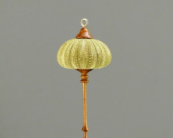 Hanging Ornament- Green Sea Urchin & Walnut  (OR67)