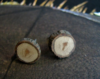 Hickory Twig Rustic Wooden Stud Earrings No 2 by Tanja Sova