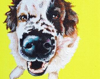 4x4 Custom Pet Portrait