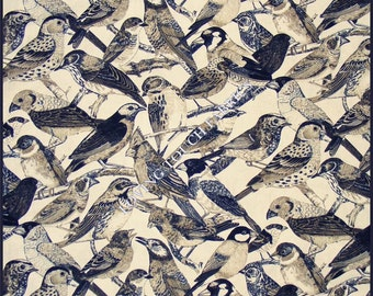 "Timeless Treasures ""Bird"" C-9576 Cotton Fabric 1/2 YARD 18"" X 44"""