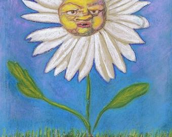 Grumpy daisy in a field.