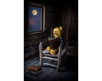 Reading by the Light of the Moon through a Window a Teddy Bear in a Chair with a Story Book No.40952 A Fine Art Surreal Fantasy Photograph
