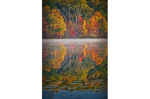 Colorful Autumn Tree Reflections on Hall Lake in the Gun Lake Recreation Area in West Michigan No.82505 A Fall Vertical Landscape Photograph