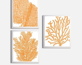 Coral Ocean Beach Sea Prints Orange Custom Colors set of 3