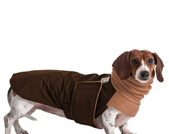 MINIATURE DACHSHUND Winter Dog Coat, Winter Coat, Dog Coat, Dog Clothing