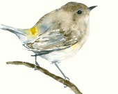 Original Watercolor Painting Little Brown Bird