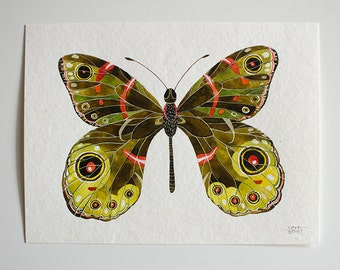 Butterfly - original watercolor illustration