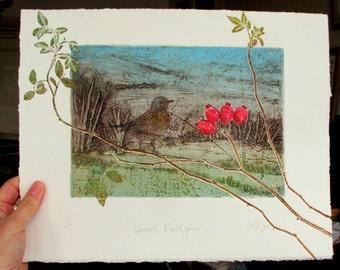 Winter Fieldfare, Devon Hedgerow Collagraph mono print