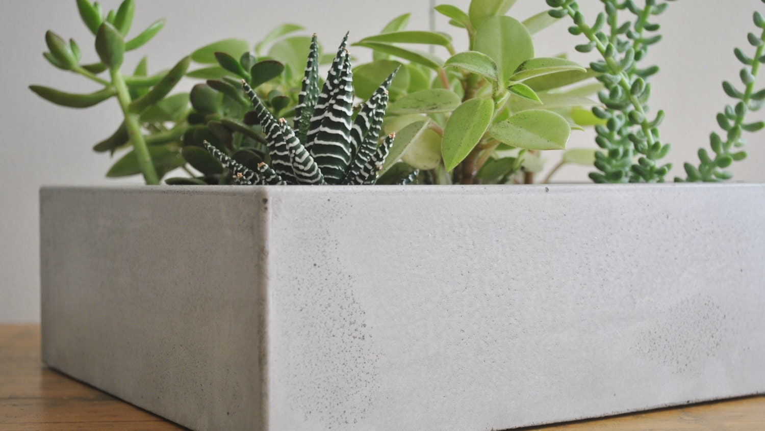 Large Rectangular Concrete Planter By Fmcdesign On Etsy