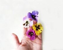 Pansy Hair Pins. Small Fabric Flower Bobby Pins in Violet, Cerise, Yellow, White with Lavender. Bright Summer Wedding Hair Accessories.