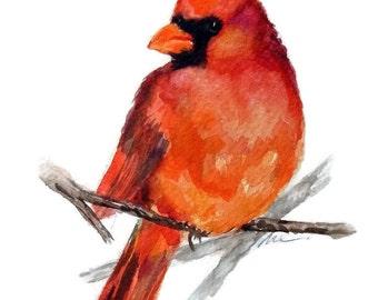 Bird Art Original Watercolour Painting Red Cardinal Bird Illustration Art Animal Nursery Art Hand Painted Watercolor 6x8