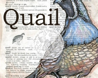 PRINT:  Quail Mixed Media Drawing on Antique Dictionary