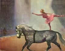 Percheron Horse Circus Rider Woman Wesley Dennis Vintage Illustration Print 1950s