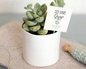 Let Love Grow Succulent Favor Tags, Wedding Favor tags