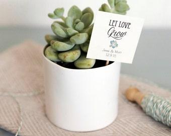 25 Let Love Grow Succulent Favor Tags, Wedding Favor tags